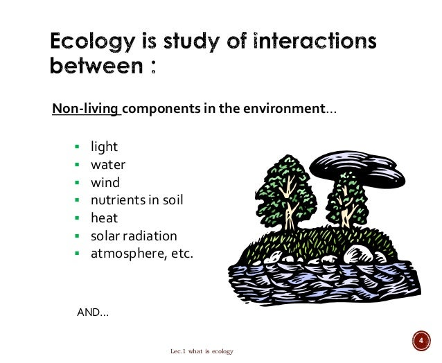 water as an ecological factor