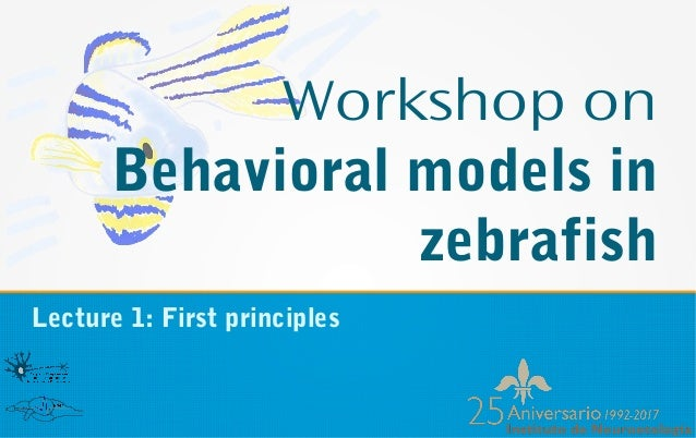 Workshop on Behavioral models in zebrafish Lecture 1: First principles