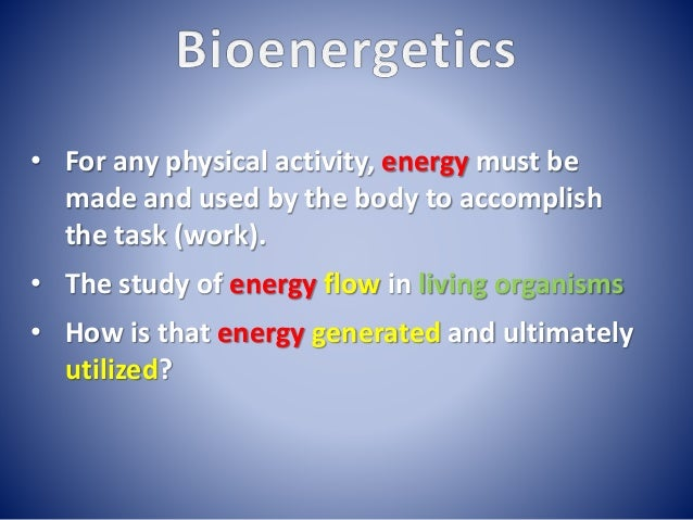 Lecture 1 bioenergetics