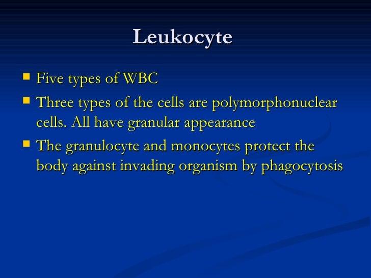 <ul><li>Five types of WBC </li></ul><ul><li>Three types of the cells are polymorphonuclear cells. All have granular appear...