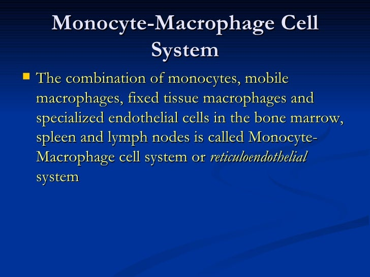 Monocyte-Macrophage Cell System <ul><li>The combination of monocytes, mobile macrophages, fixed tissue macrophages and spe...