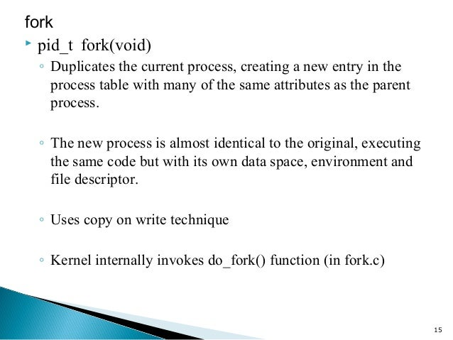 The fork() System Call