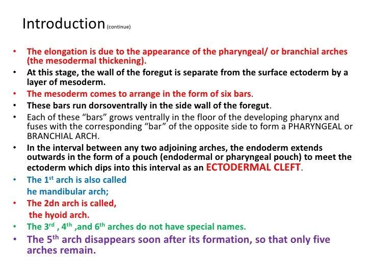 the pigman chapter 9 pdf