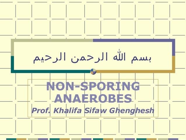 بسم ا الرحمن الرحيم NON-SPORING ANAEROBES Prof. Khalifa Sifaw Ghenghesh