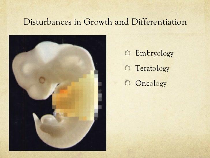 Disturbances in Growth and Differentiation <ul><li>Embryology </li></ul><ul><li>Teratology </li></ul><ul><li>Oncology </li...