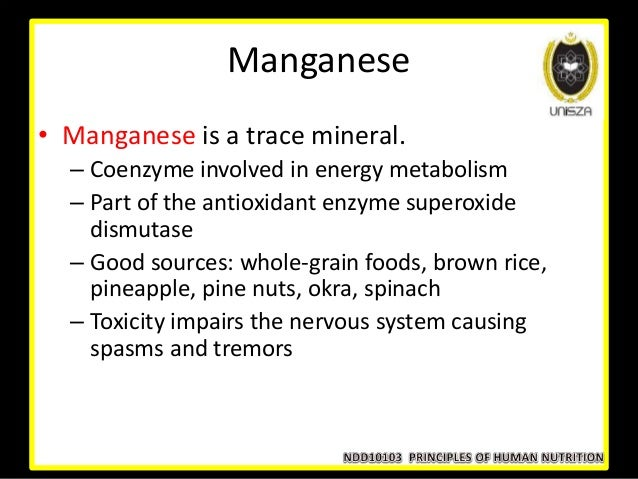 Foods That Are Good Sources Of Coenzyme