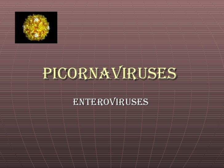Picornaviruses   Enteroviruses