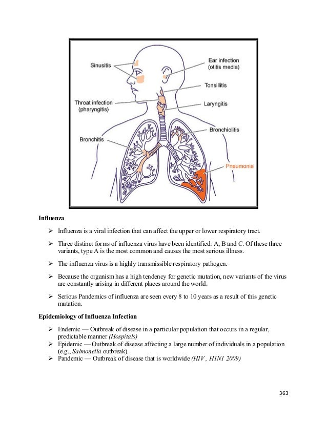 Lecture 14 Disorders Of The Respiratory System Pathology