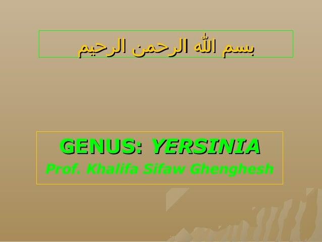 بسم ا الرحمن الرحيم  GENUS: YERSINIA Prof. Khalifa Sifaw Ghenghesh