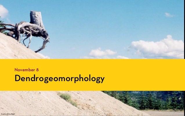 November 8                  DendrogeomorphologySource: Erica Bigio