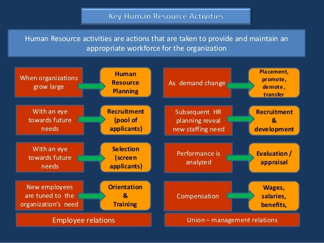 evolving future of human resource management Position and structure of human resource management human resource which allows the organization to respond to evolving and anticipation of future.