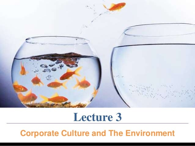 Lecture 3  Corporate Culture and The Environment