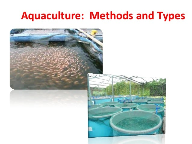 Aquaculture: Methods and Types