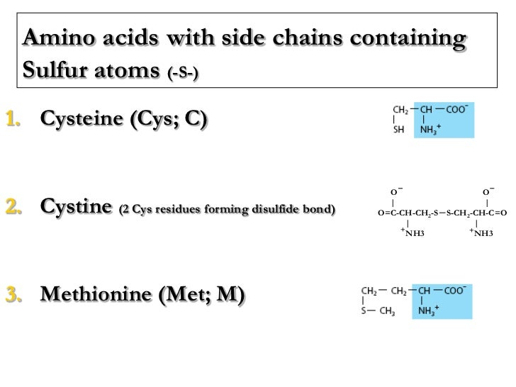 Lecture 2 3 protein chemistry