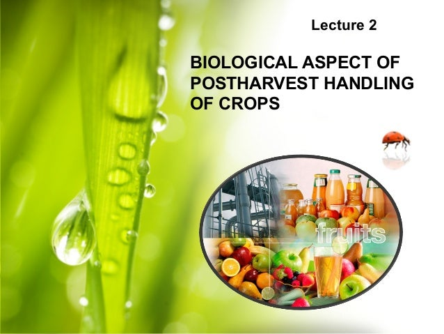 Lecture 2 BIOLOGICAL ASPECT OF POSTHARVEST HANDLING OF CROPS