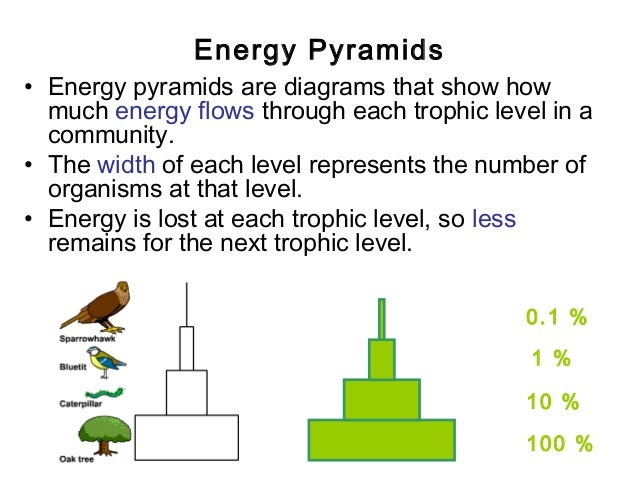 Lecture 2 Energy Relationships