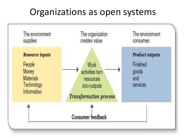 organizations as open systems Open system perspectives see organizations both as hierarchical systems and as loosely coupled systems open systems tend to have some semblence of clustering and levels -- multiple subsystems that specialize in certain system activities.