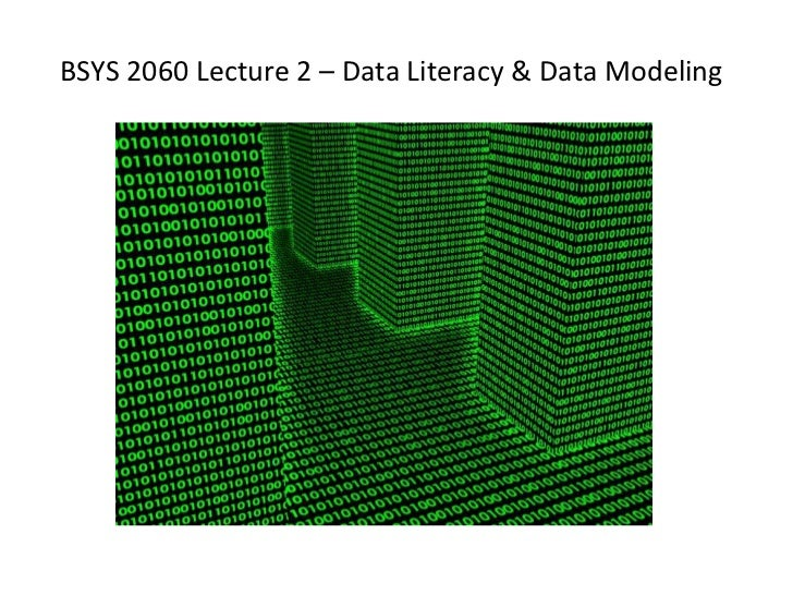BSYS 2060 Lecture 2 – Data Literacy & Data Modeling
