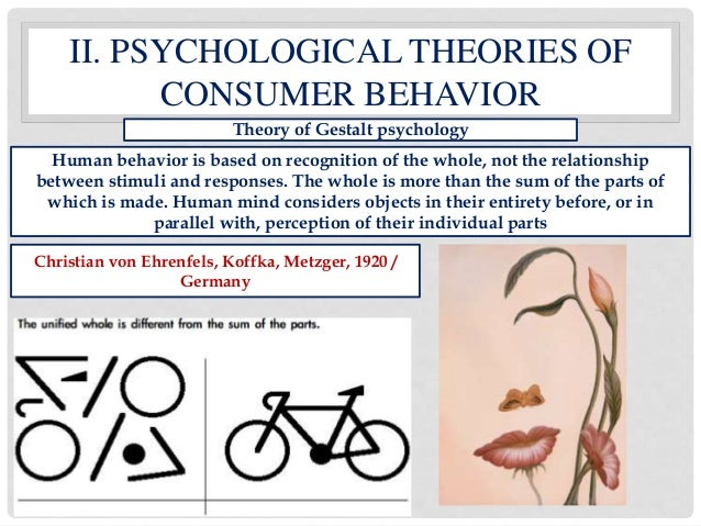 psychological theory of consumer behaviour Consumer perception theory is any attempt to understand how a consumer's perception of a product or service influences their behavior those who study consumer perception try to understand.