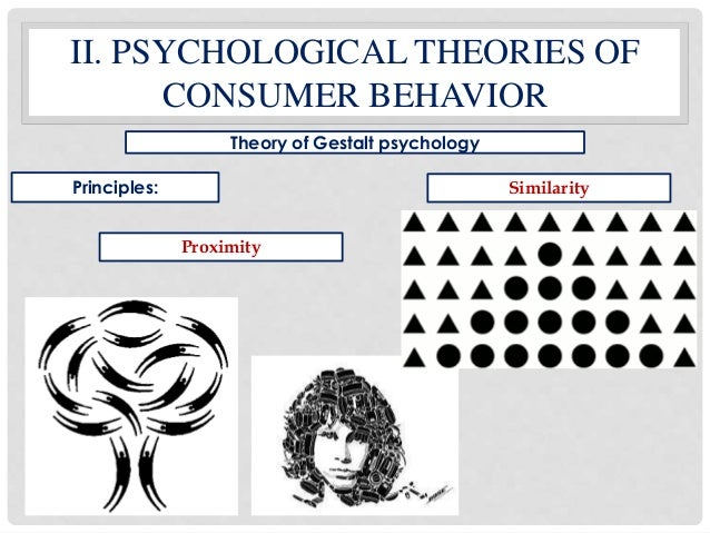 theory of consumer behaviour In economic theory, economics has been one of the least important  consumer  behavior, it is not because of a lack of room for improvement.