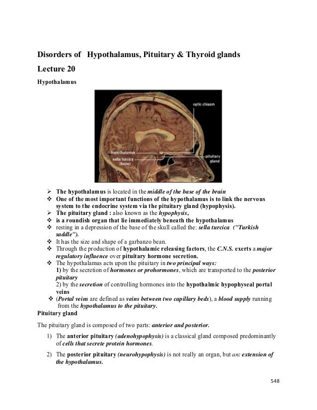 Lecture 20 Disorders Of Hypothalamus Pituitary And Thyroid Glands