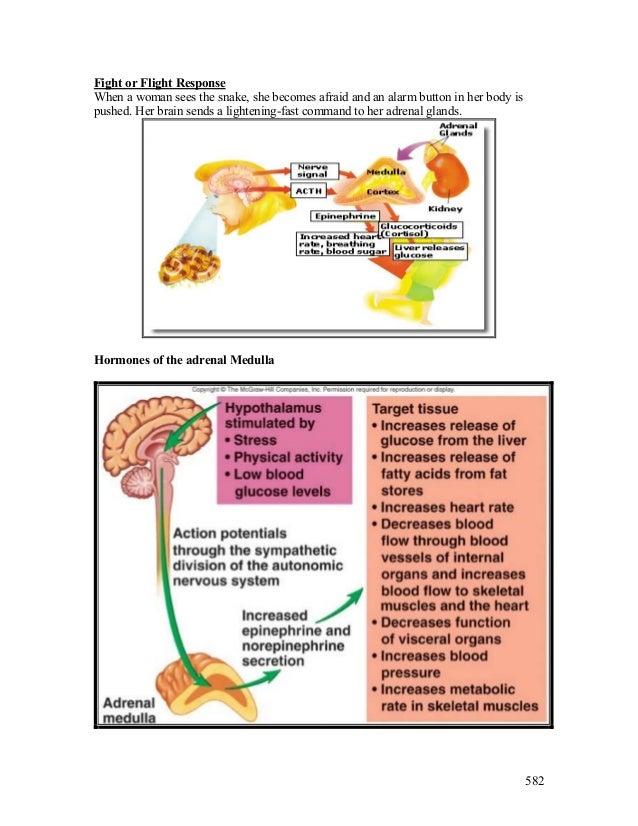 corticosteroids lecture
