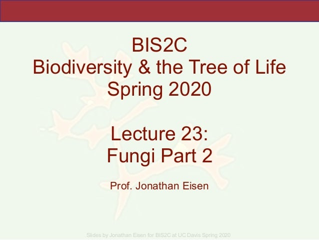 Slides by Jonathan Eisen for BIS2C at UC Davis Spring 2020 BIS2C Biodiversity & the Tree of Life Spring 2020 Lecture 23: F...