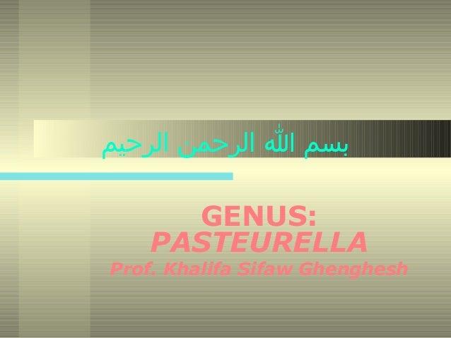 بسم ا الرحمن الرحيم GENUS: PASTEURELLA  Prof. Khalifa Sifaw Ghenghesh