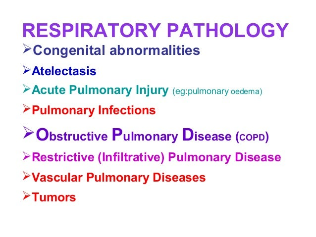 RESPIRATORY PATHOLOGYCongenital abnormalitiesAtelectasisAcute Pulmonary Injury (eg:pulmonary oedema)Pulmonary Infectio...