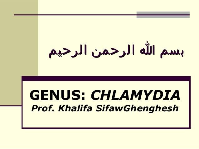 بسم ا الرحمن الرحيم GENUS: CHLAMYDIA Prof. Khalifa SifawGhenghesh