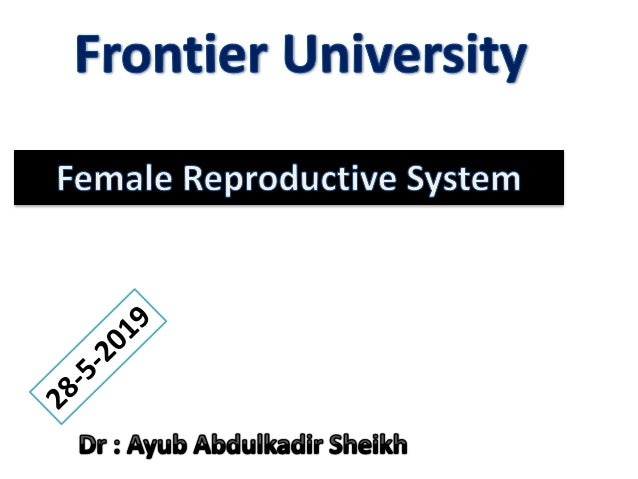 FEMALE REPRODUCTIVE ORGANS 1. Pair of ovaries: produce eggs or ova and secrete female sex hormones. 1. A system of genital...
