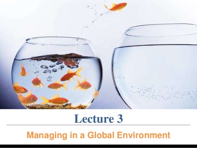 Lecture 3  Managing in a Global Environment