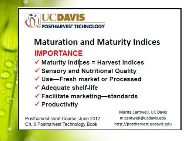 Importance of maturity