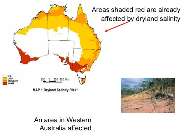 dryland salinity in australia essay The australian landscape and dryland salinity dryland salinity occurs on the great plains of north america, south africa, turkey, thailand, india, argentina as well as australia in australia, all states have been afflicted by dryland salinity.
