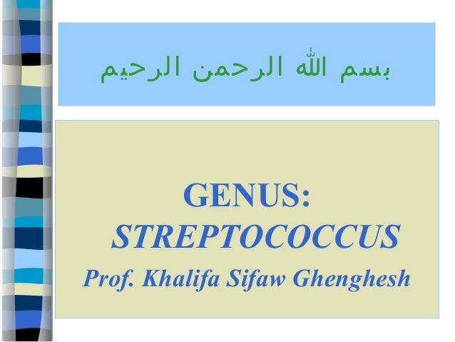 بسم ا الرحمن الرحيم  GENUS: STREPTOCOCCUS Prof. Khalifa Sifaw Ghenghesh