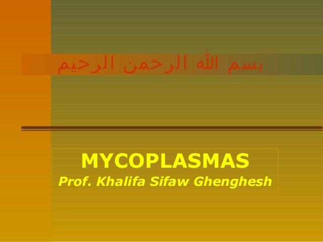 بسم ا الرحمن الرحيم  MYCOPLASMAS Prof. Khalifa Sifaw Ghenghesh