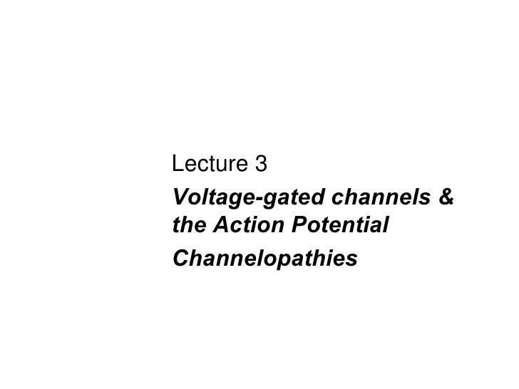 <ul><li>Lecture 3  </li></ul><ul><li>Voltage-gated channels & the Action Potential </li></ul><ul><li>Channelopathies </li>...