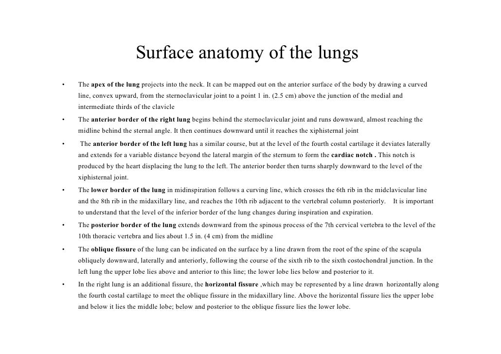 Lecture 3 Lungs Pleura