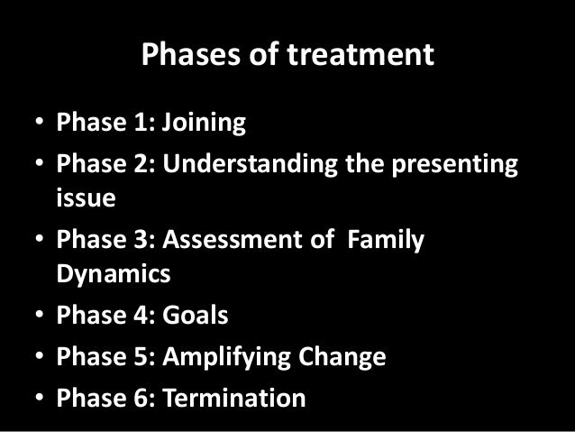 Lecture 3 structural family therapy