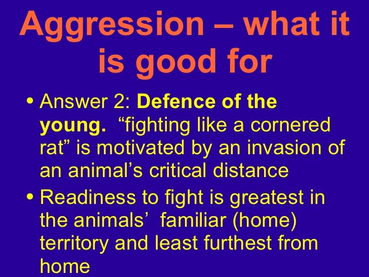 """<ul><li>Answer 2:  Defence of the young.   """"fighting like a cornered rat"""" is motivated by an invasion of an animal's criti..."""