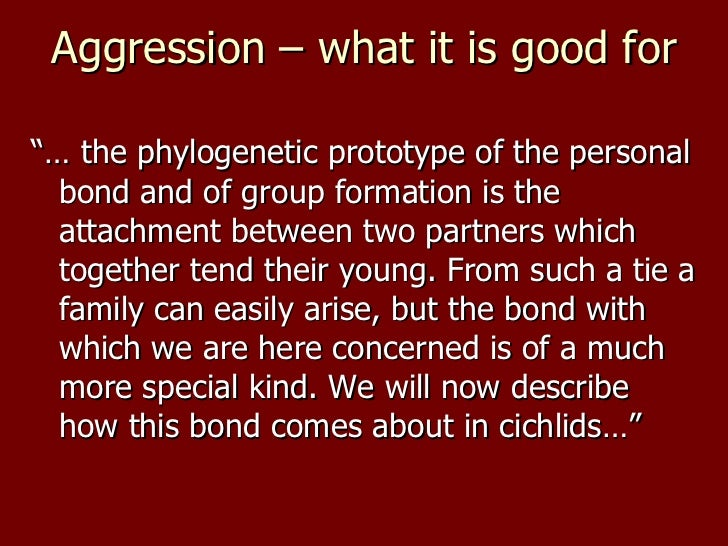 """<ul><li>""""… the phylogenetic prototype of the personal bond and of group formation is the attachment between two partners w..."""