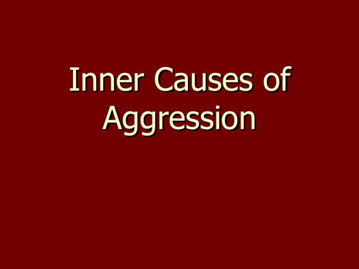 Inner Causes of Aggression