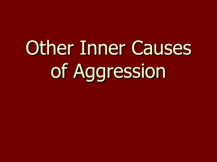 Other Inner Causes of Aggression