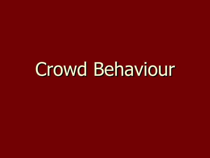 Crowd Behaviour