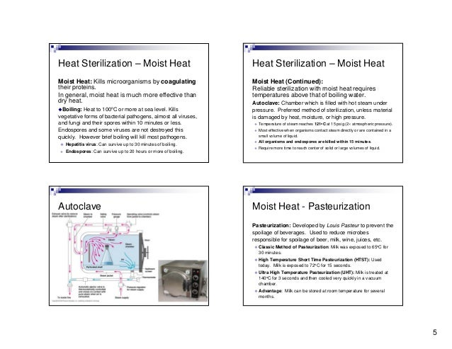 Lecture4 sterilization-100716233639-phpapp01