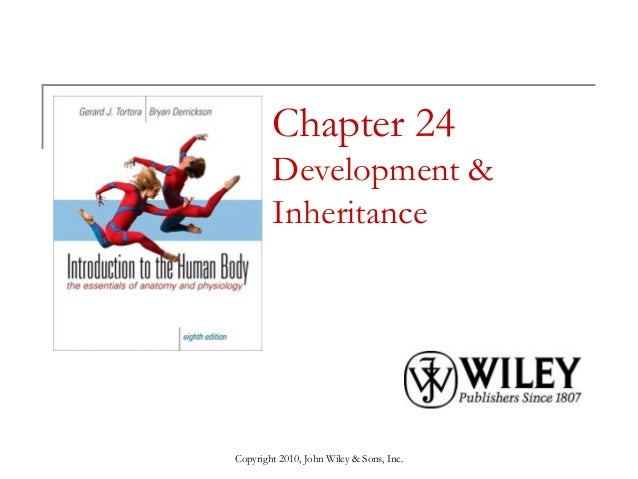 Chapter 24 Development & Inheritance  Copyright 2010, John Wiley & Sons, Inc.