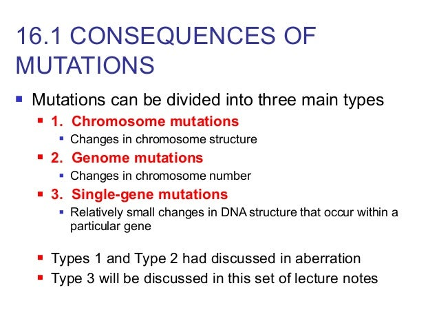 When Things Go Wrong: Genetic Mutations