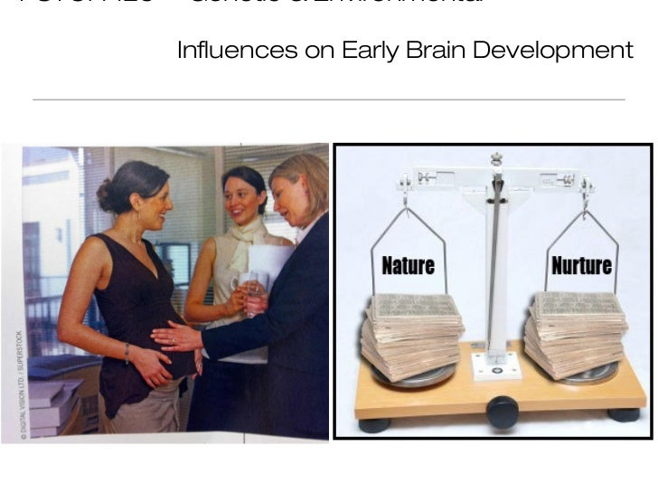 PSYCH 125   Genetic & Environmental            Influences on Early Brain Development