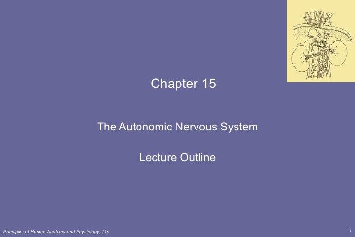 Chapter 15 The Autonomic Nervous System Lecture Outline