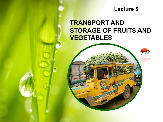 Lecture 5 TRANSPORT AND STORAGE OF FRUITS AND VEGETABLES